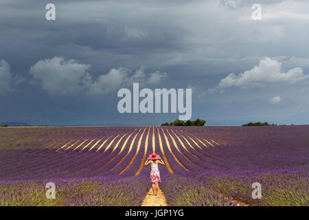 Woman in white top, floral skirt and pink hat standing in lavander field under moody sky in Valensole, Provence, - Stock Photo