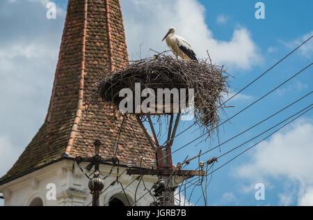 Stork's nest in Sibiel village of Saliste commune, Transylvania region in Romania. Holy Trinity Church on background - Stock Photo