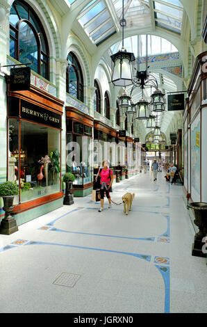 the royal arcade, norwich, norfolk, england - Stock Photo