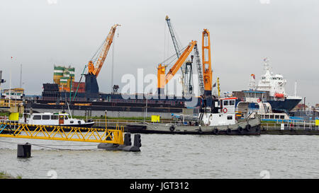 A large bulk carrier loaded with ship cranes. Ship in cargo port terminal. Container ship being unloaded in the - Stock Photo