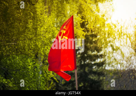 flag of the Soviet Union develops on the background of green trees. flag of the USSR on Festive demonstration November - Stock Photo