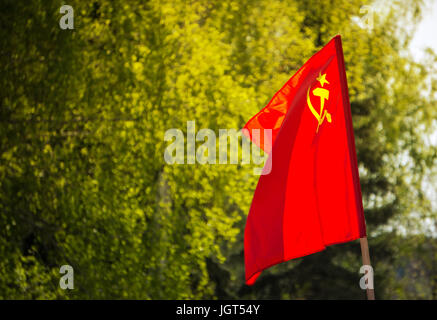 Union of Soviet Socialist Republics USSR HD flag. The flag with the hammer and sickle on a background of green trees. - Stock Photo