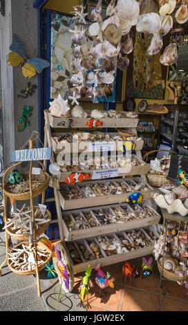Shop at yachting harbour sells dead sea animals and shells as souvenirs, Puerto Calero, Lanzarote island, Canary - Stock Photo