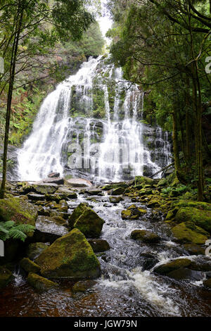 Nelson Falls in the Franklin-Gordon Wild Rivers National Park in western Tasmania, Australia - Stock Photo