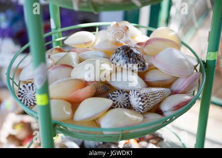 MAKARSKA RIVIERA,CROATIA - 20 JUNE,2017: Buy seashells for souvenirs in the street shop for tourists. Beautiful - Stock Photo