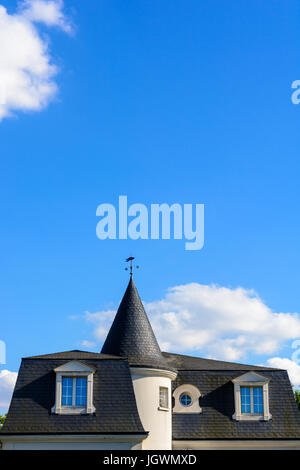 Slate roof of a high standing house with a turret and a weathervane under a blue sky.
