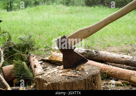 Ax in stump on clearing in wood at sun summer day - Stock Photo