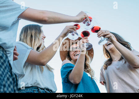 Friends making a toast smiling, Firenze, Toscana, Italy, Europe - Stock Photo