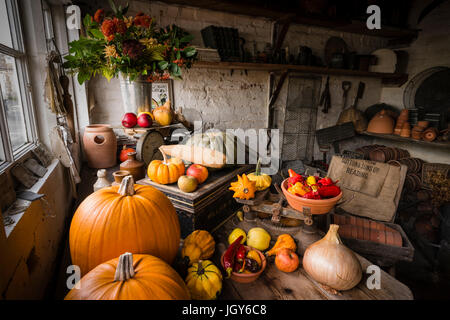 Still life of carefully arranged various types of pumpkins and fruits in a garden shed for display - Stock Photo