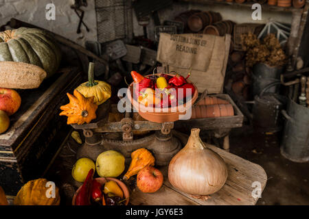Still life of carefully arranged various types of vegetables and fruits in a garden shed for display - Stock Photo