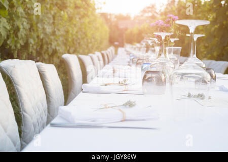 Party table set for social event in the countryside - Stock Photo
