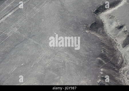 Nazca Lines, Peru - Stock Photo