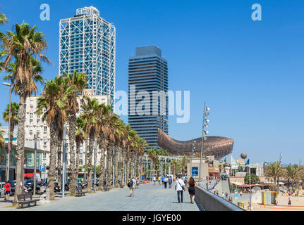 Barcelona Catalunya Platja de la Barceloneta promenade and beach Passeig maritim Barcelona spain eu europe Catalonia - Stock Photo