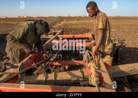 Mechanic repairing farming equipment. Senegal. - Stock Photo