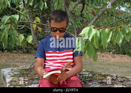 Boy reading under a tree. France. - Stock Photo