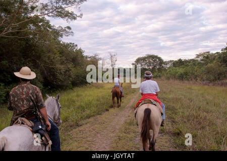 People Riding, Pantanal, Mato Grosso do Sul, Brazil - Stock Photo