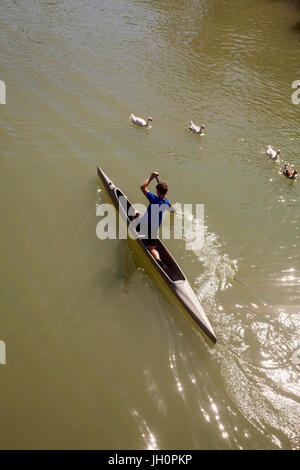 Stand up paddle boarders on the river Tagus in the Spanish town of Aranjuez Spain - Stock Photo