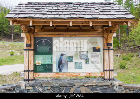 Information display at White Mountain fire overlook along Sherman Pass Scenic Byway (highway 20), Washington, USA - Stock Photo