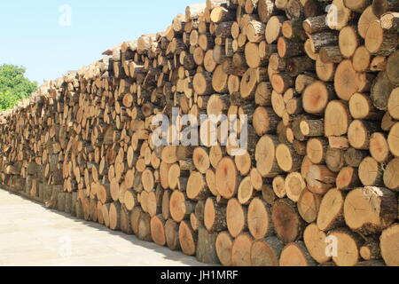 A firewood wall, logs piled high and long to dry in the sun. - Stock Photo