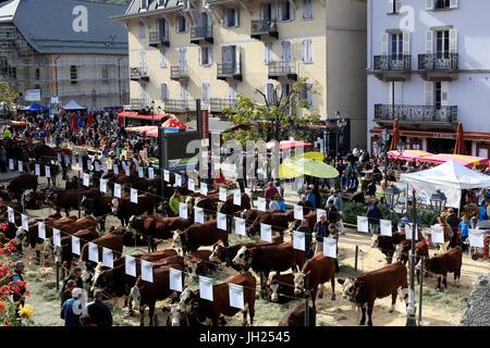 The agriculture fair (Comice Agricole) of Saint-Gervais-les-Bains. France. - Stock Photo
