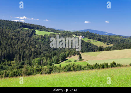 Landscape with farmhouse, near Schonwald, Black Forest, Baden Wurttemberg, Germany, Europe - Stock Photo