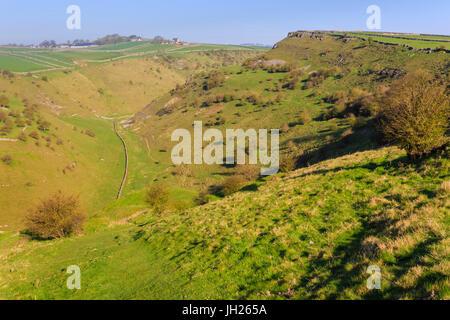 Cressbrook Dale Nature Reserve, rolling landscape, elevated view in spring, Peak District National Park, Derbyshire, - Stock Photo