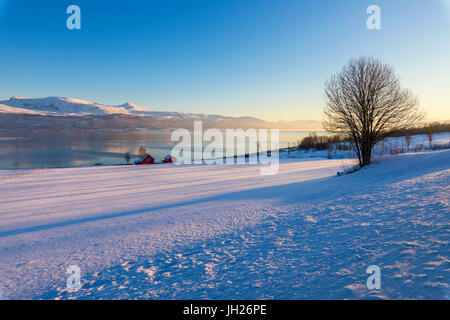 Wooden hut in the snowy landscape facing the cold sea on the road leading from Gibostad to Finnsnes, Senja, Troms, - Stock Photo
