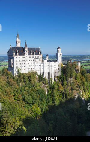 Neuschwanstein Castle, Fussen, Allgau, Allgau Alps, Bavaria, Germany, Europe - Stock Photo