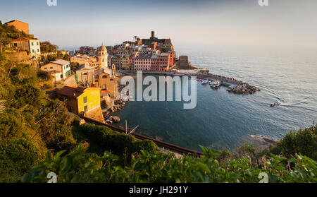 Vernazza in sunset light, Cinque Terre National Park, UNESCO World Heritage Site, Liguria, Italy, Mediterranean, - Stock Photo