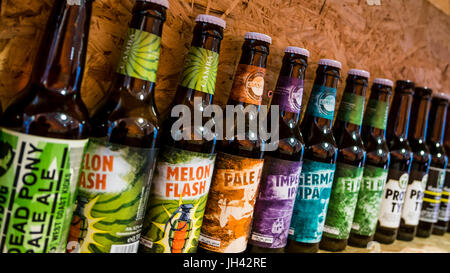 bamberg, Germany: Circa November 2015 - a variety of fancy beers in bamberg - Stock Photo