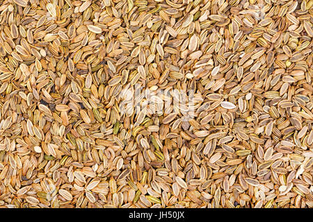 Dried fennel seeds background. - Stock Photo
