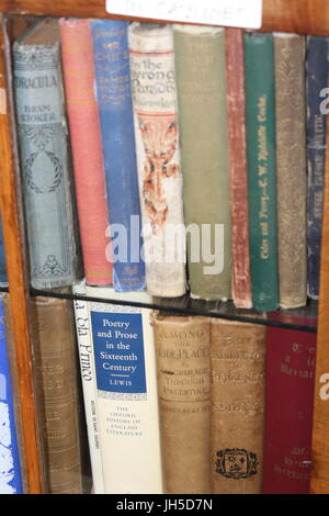 books on shelf, book shelf, book case, old books, bookworm, avid reader, classic books, book shelf, book shelves, - Stock Photo