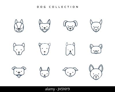 Set dogs in linear style. 12 face breeds puppy. Vector Illustration - Stock Photo