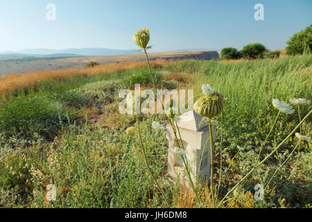Stone marker of the Jesus trail ( a 65-km long-distance walk from Nazareth to Capernaum )  in Arbel Nature Reserve, - Stock Photo