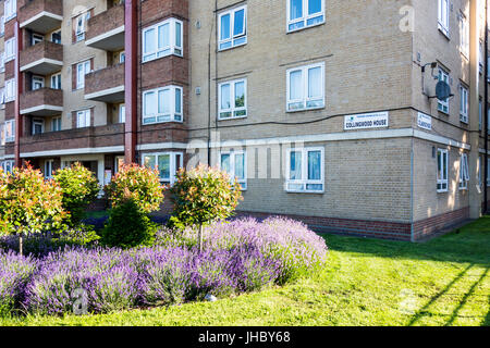 Collingwood House, Darling Row, Bethnal Green, Tower Hamlets, East London, UK - Stock Photo