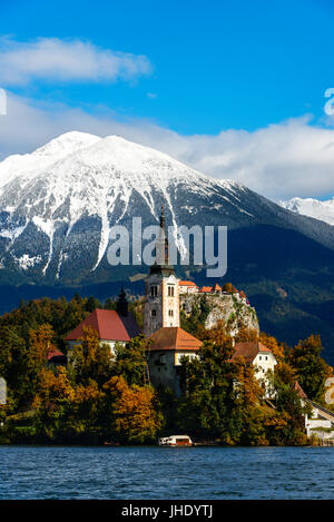The church on the island in Lake Bled with in the background Bled castle and snow-capped mountains with trees in - Stock Photo