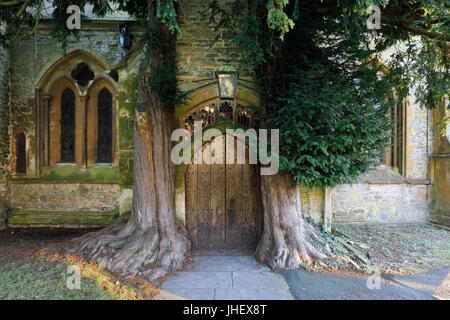 Yew trees and door of St Edward's church, Stow-on-the-Wold, Cotswolds, Gloucestershire, England, United Kingdom, - Stock Photo