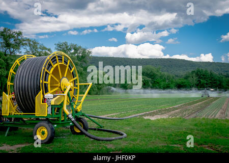 Irrigation equipment watering a vegetable field on a farm - Stock Photo