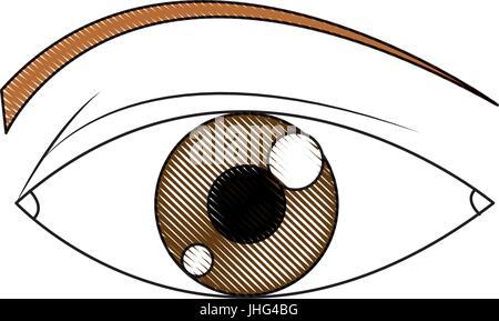 Eye Pupil Iris Vector Symbol Icon Design Beautiful Illustration
