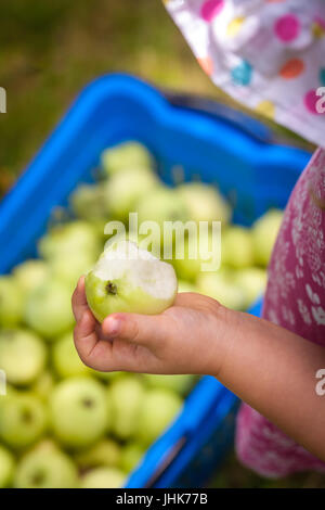 Cute little girl holding half eaten apple - Stock Photo
