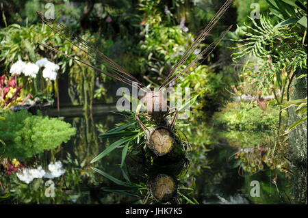 Metal Dragonfly sculpture in pond, Flower Dome, Gardens by the Bay, Singapore - Stock Photo