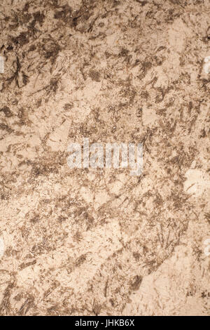 marble floor with glitters. background, texture. - Stock Photo
