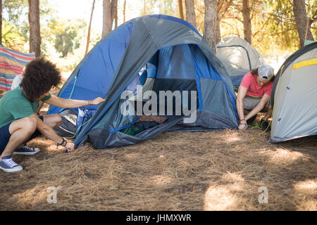 Male friends making tent on field during camping - Stock Photo