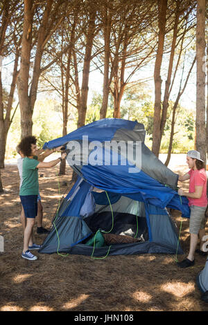 Full length of friends making tent on field during camping - Stock Photo