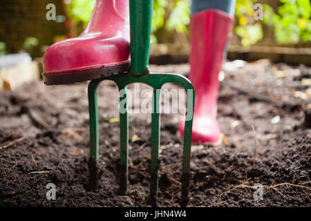 Low section of woman wearing pink rubber boot standing with gardening fork on dirt at backyard - Stock Photo
