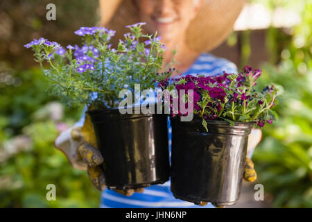 Midsection of senior woman holding flower pots at backyard - Stock Photo