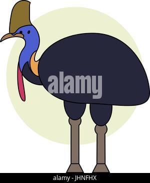 Cassowary bird. Vector cartoon tropical bird made in flat style. - Stock Photo
