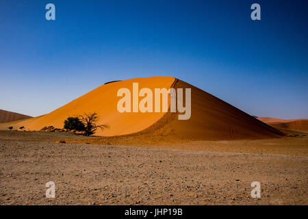 Dune 45 in Sossusvlei, Namibia - Stock Photo