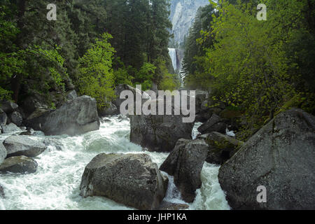Rushing river and forest with Vernal Falls in the background at Yosemite National Park - photography by Paul Toillion - Stock Photo