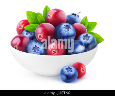 Isolated berries. Pile of fresh cranberry and blueberry fruits in white ceramic bowl isolated on white background - Stock Photo